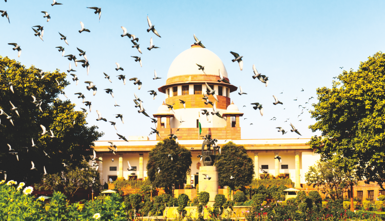 Explained: Supreme Court SC/ST judgment, in review
